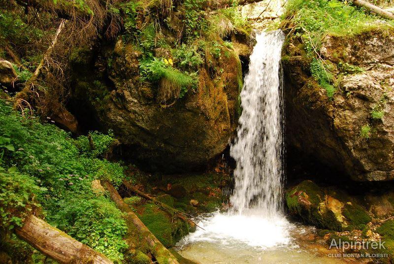 Comorile Bucegilor - Horoabele